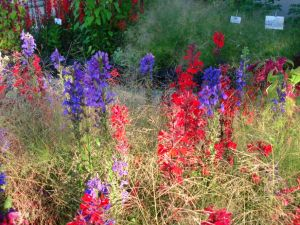 BeFunky_flower colours.jpg