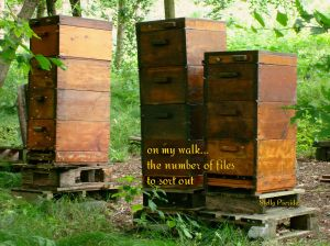 walk,Neusaess,haiga,bees,