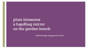 plum blossoms, mirror,haiku