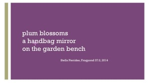 plum blossoms, mirror,haiku