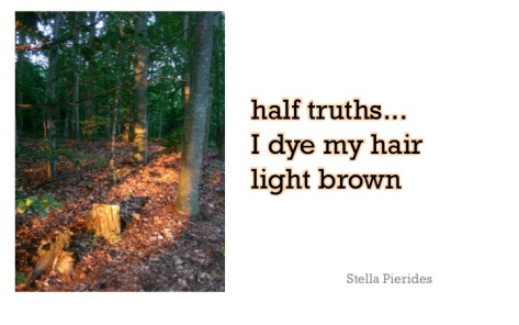 haiku,hair,brown,haiga,