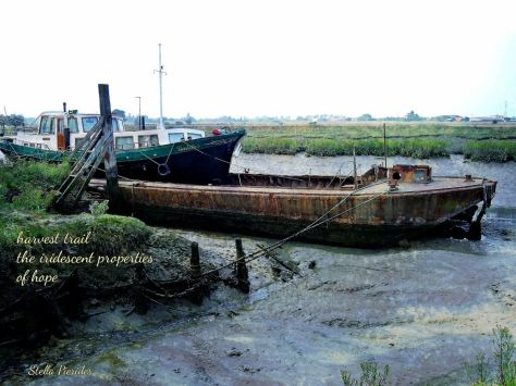 Faversham boats,haiga,poem,