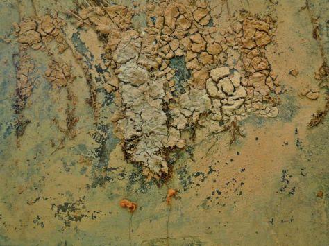 Anselm Kiefer, Art Museum Walter,
