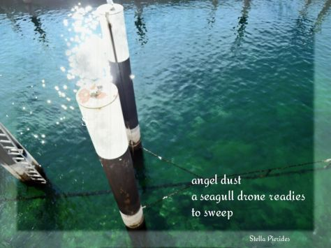 haiga,sea,water,