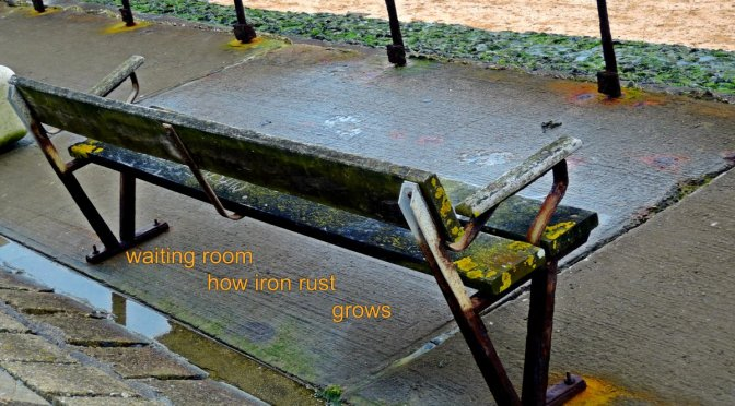 haiga,waiting room,bench,rust,