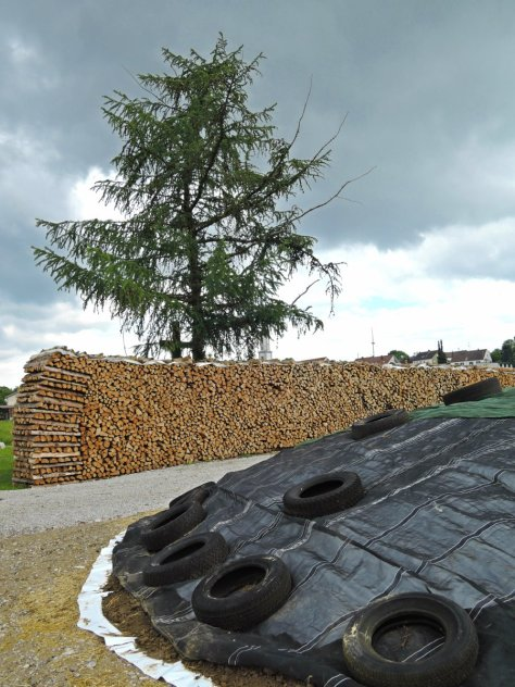 village woodpile