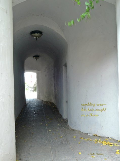 dark passage, Guenzburg,haiga,