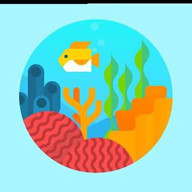 Great Barrier Reef fitbit badge