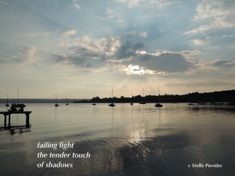 haiga,Ammersee,sunset,