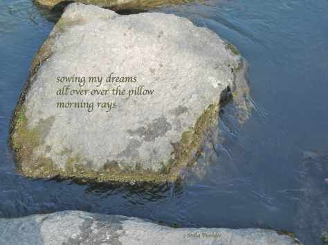 stone,haiku,
