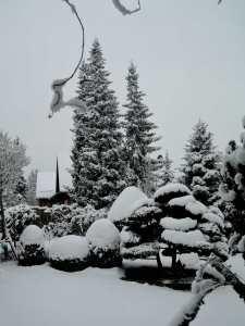 snow,haibun,