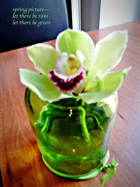 flower,spring,haiga,