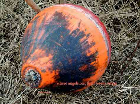 buoy, haiga,where angels,