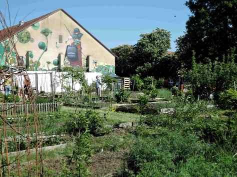 Augsburg, Interkultureller Garten West,