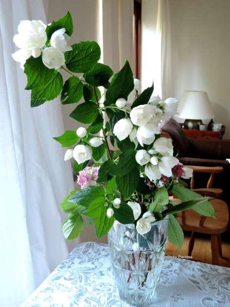 vase,flowers,white,
