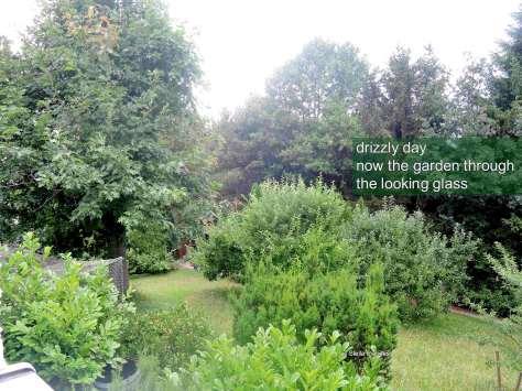 garden,haiga,