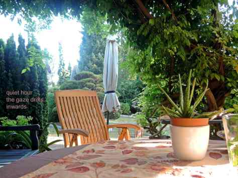 patio,haiga,garden,