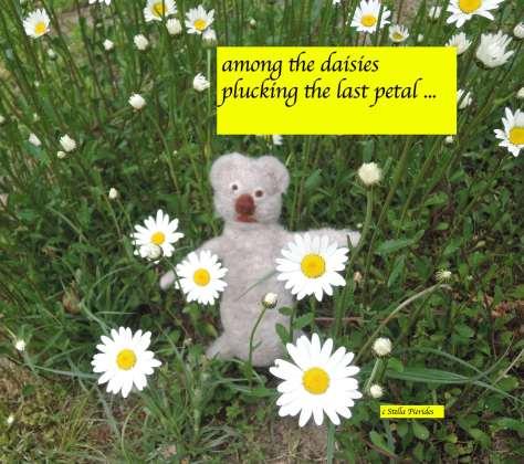 daisies, haikufeltings,