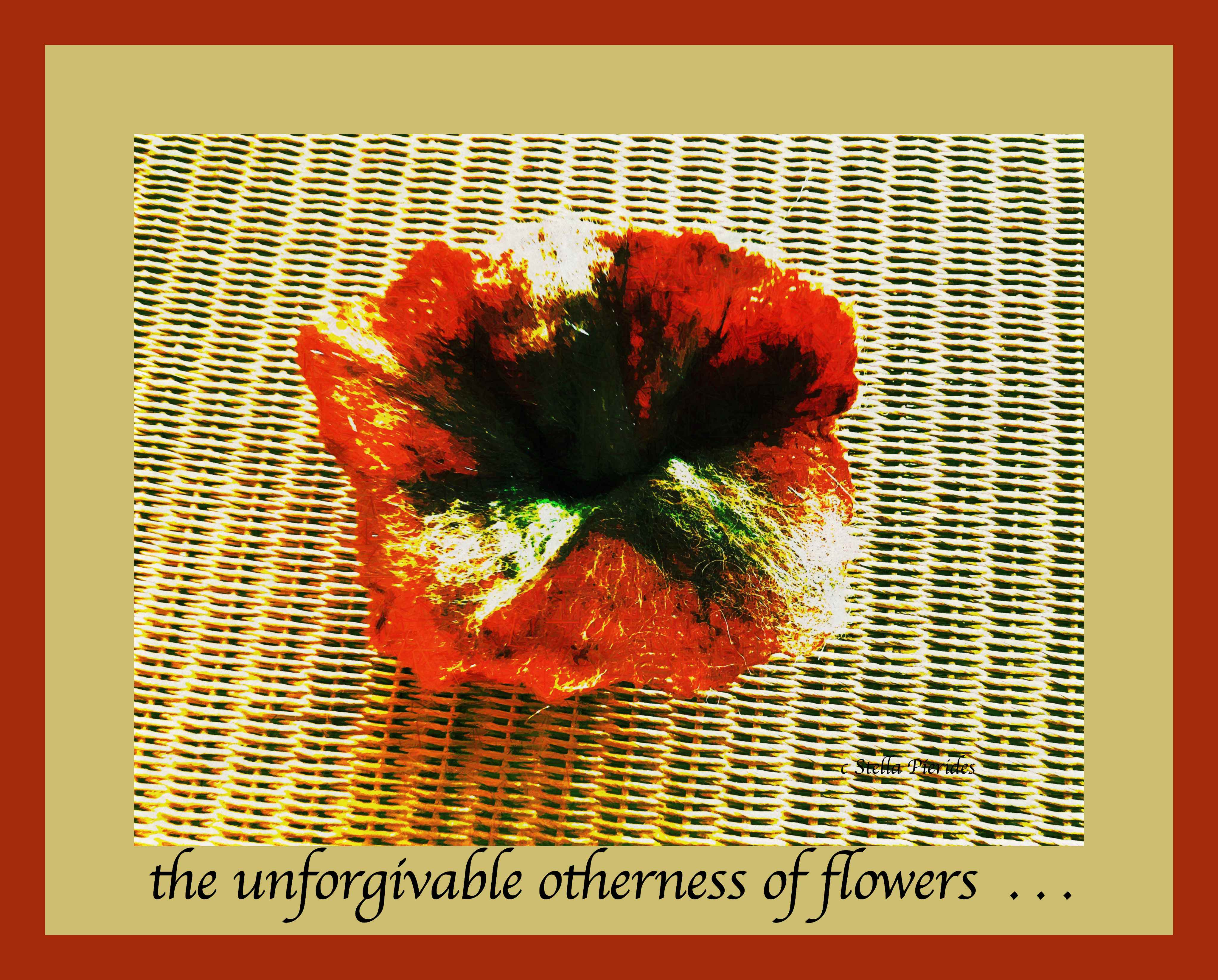 flower,